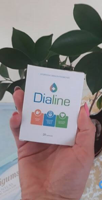 dialine-review