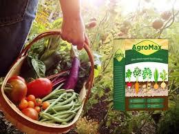 Agromax - Körperentgiftung - preis - bestellen - test