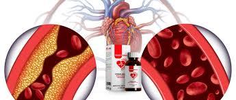 Cardio NRJ -für Bluthochdruck - Aktion - kaufen - Bewertung