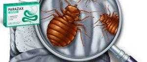 Parazax Complex - gegen Parasiten - erfahrungen - comments - kaufen