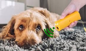 BarXStop - Hundeabwehrmittel - Amazon - in apotheke - bestellen
