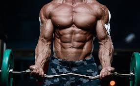 Truflexen Muscle Builder - anwendung - inhaltsstoffe - test