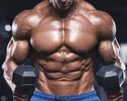 Truflexen Muscle Builder - für Muskelmasse - kaufen - in apotheke - forum