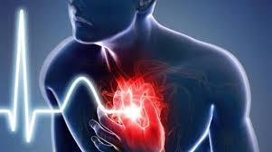 CardioActive – für Bluthochdruck - Aktion – inhaltsstoffe – anwendung