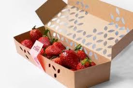 Home Berry Box - Amazon - preis - bestellen