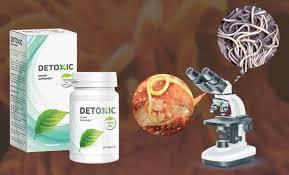 Detoxic – inhaltsstoffe – test – forum