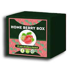 Home Berry Box - hausgemachte Erdbeeren - Bewertung - Kommentatoren - Inhaltsstoffe