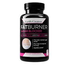 Fatburner - zum Abnehmen - inhaltsstoffe - erfahrungen - anwendung