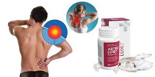 Artrolux - bestellen - preis - test