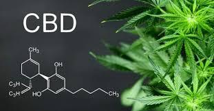 Greenboozt CBD Oil – preis – Amazon – Nebenwirkungen