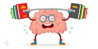 Omega IQ - besseres Gedächtnis - in apotheke - erfahrungen - kaufen