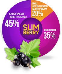 Slimberry kapseln - zum Abnehmen - anwendung - Bewertung - comments