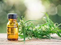 Cannabis Oil - bewertung - test - Stiftung Warentest - erfahrungen